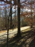 One-wheelers enjoy a fall day
